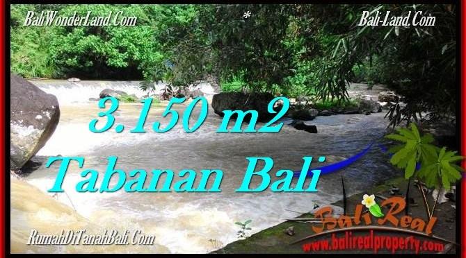 TANAH MURAH di TABANAN BALI DIJUAL 3,150 m2 View kebun dan sungai