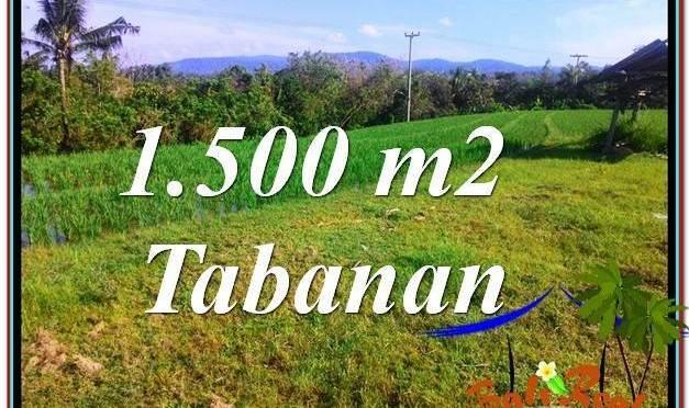 DIJUAL MURAH TANAH di TABANAN BALI 1,500 m2 di Tabanan Selemadeg