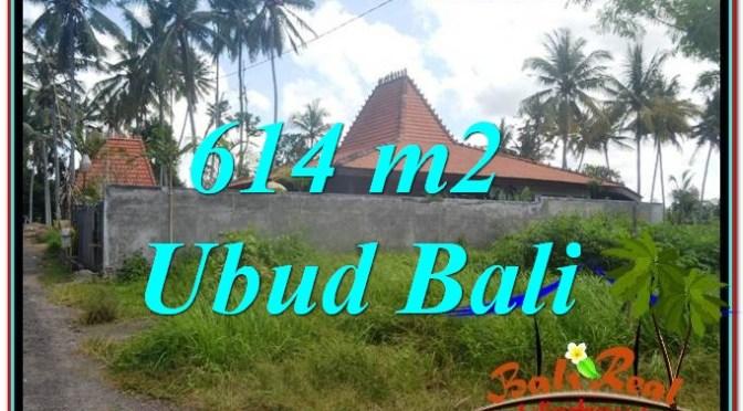 JUAL TANAH MURAH di UBUD BALI 6 Are di Sentral Ubud