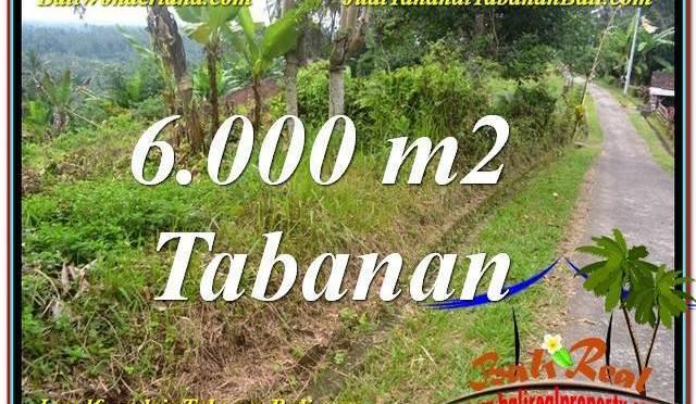 TANAH DIJUAL di TABANAN BALI 6,000 m2 di Tabanan Selemadeg