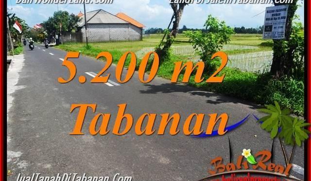 DIJUAL MURAH TANAH di TABANAN BALI Untuk INVESTASI TJTB351