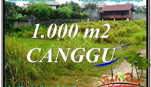 TANAH di CANGGU BALI DIJUAL Untuk INVESTASI TJCG213