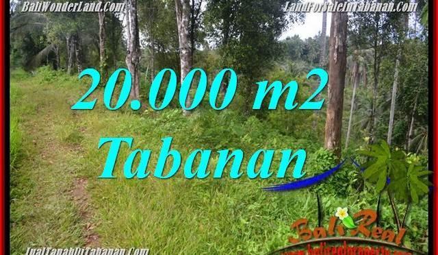 JUAL TANAH MURAH di TABANAN BALI 20,000 m2 View kebun