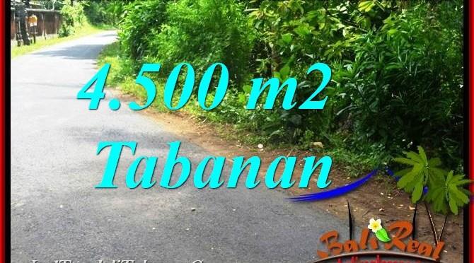 JUAL TANAH DI TABANAN TJTB380