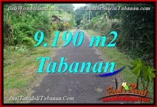TANAH DIJUAL MURAH di TABANAN BALI 91.9 Are di Tabanan Selemadeg Timur