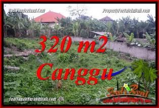 JUAL TANAH di CANGGU BALI 320 m2  LINGKUNGAN VILLA