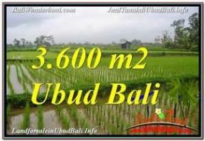JUAL TANAH MURAH di UBUD BALI 3,600 m2  VIEW SAWAH DAN VILLA