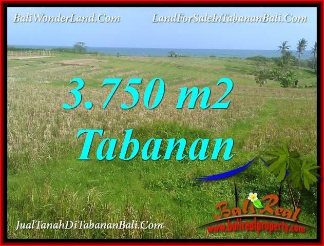 JUAL MURAH TANAH di TABANAN BALI 37.5 Are VIEW LAUT, GUNUNG DAN SAWAH