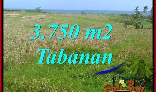 JUAL TANAH MURAH di TABANAN 3,750 m2 VIEW LAUT, GUNUNG DAN SAWAH