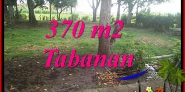 TANAH DIJUAL di TABANAN 3.7 Are di TABANAN SELEMADEG