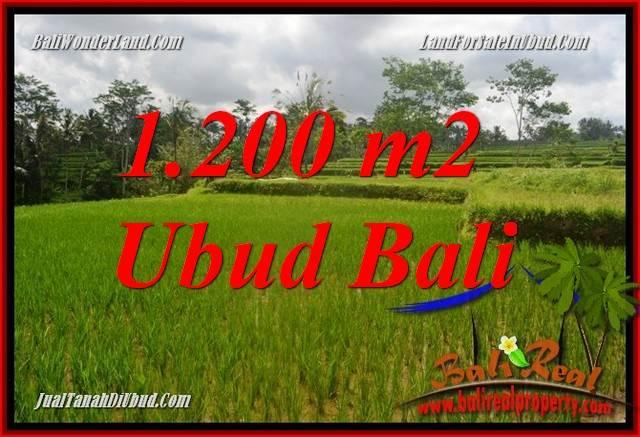 Tanah Murah di Ubud Bali 1,200 m2  View sawah, lingkungan Villa