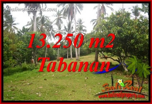 JUAL Murah Tanah di Tabanan Bali 13,250 m2 View Kebun