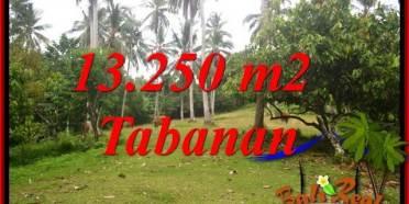 Dijual Tanah di Tabanan 13,250 m2 di Tabanan Selemadeg