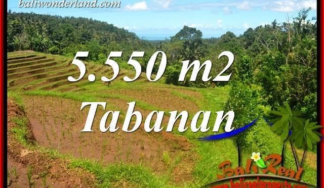 JUAL Tanah di Tabanan Bali 55.5 Are View Laut dan Sawah