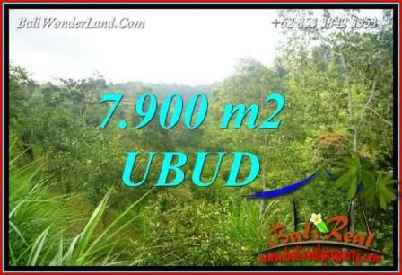Tanah di Ubud jual Murah 79 Are View Tebing dan sungai