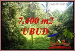 Tanah di Ubud Dijual Murah 7,700 m2 di Ubud Tegalalang