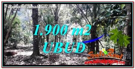 TANAH di UBUD DIJUAL MURAH 1,900 m2 di Ubud Tampak Siring
