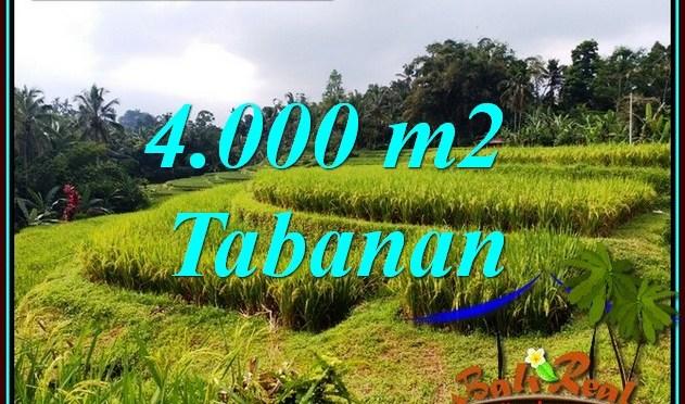 INVESTASI PROPERTY, TANAH di TABANAN BALI DIJUAL MURAH TJTB499A