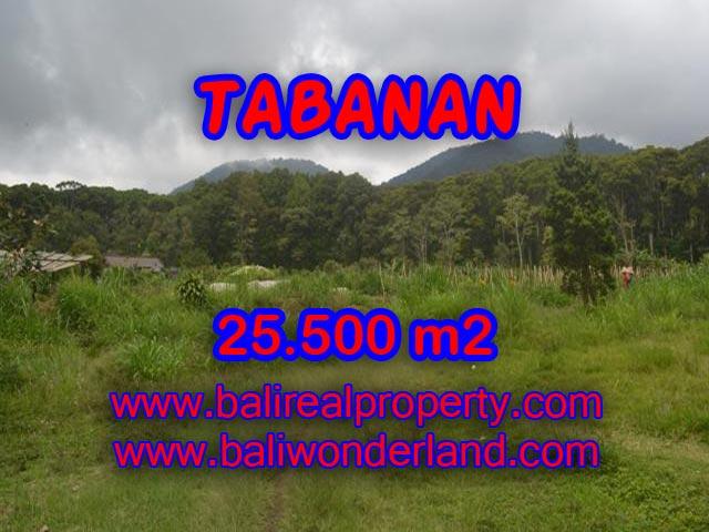 Murah ! Tanah di TABANAN Bali Dijual TJTB085