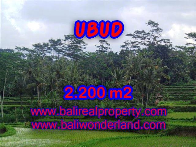 Tanah di Ubud dijual 2.200 m2 view sawah dan gunung di Ubud Payangan