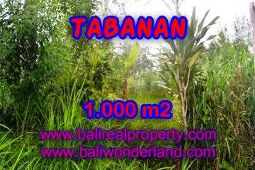 TANAH DI TABANAN MURAH DIJUAL TJTB104 - KESEMPATAN INVESTASI PROPERTY DI BALI