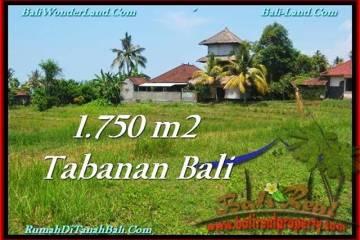 DIJUAL TANAH di TABANAN BALI 1,750 m2 di Tabanan Selemadeg