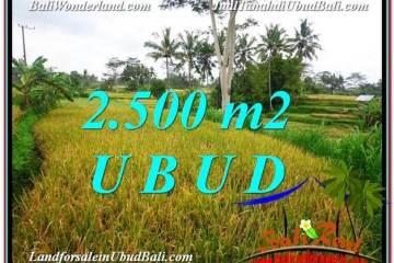 JUAL TANAH di UBUD BALI 25 Are View Sawah link Villa dan Restorant