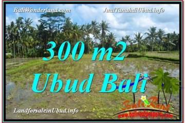 JUAL TANAH MURAH di UBUD Untuk INVESTASI TJUB619