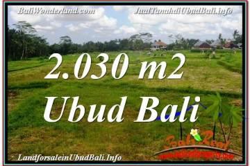 TANAH di UBUD JUAL MURAH 2,030 m2 View Sawah lingkungan Villa
