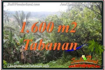 JUAL TANAH di TABANAN Untuk INVESTASI TJTB348