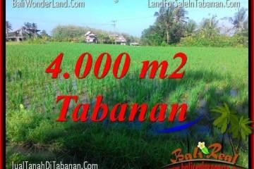 TANAH MURAH di TABANAN BALI DIJUAL Untuk INVESTASI TJTB352