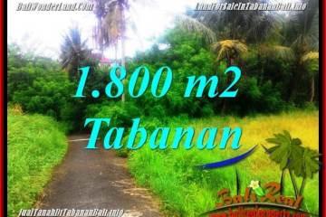 JUAL TANAH di TABANAN BALI 18.5 Are di Tabanan Selemadeg