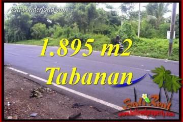 Tanah Murah di Tabanan 18.95 Are di Tabanan Selemadeg