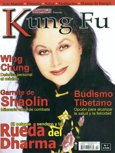 Kung-fu-4
