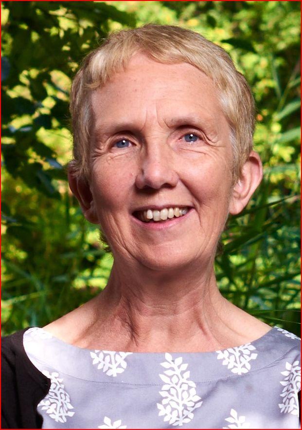 escritora Ann Cleeves