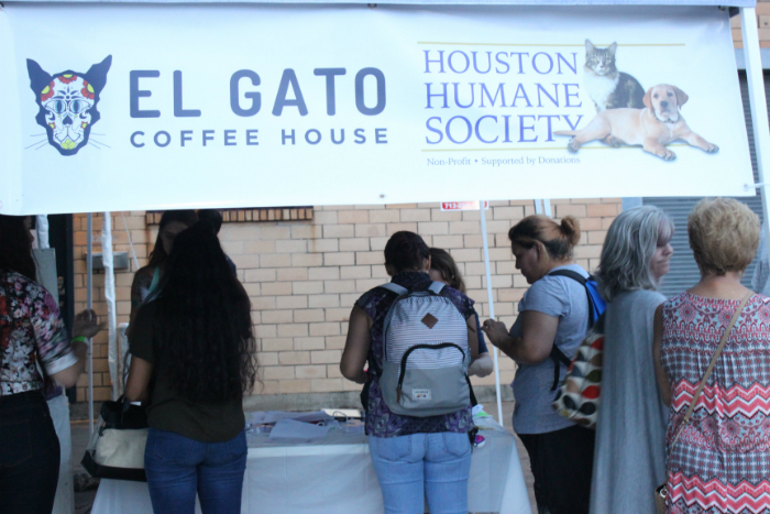 El Gato Coffee House in Houston!