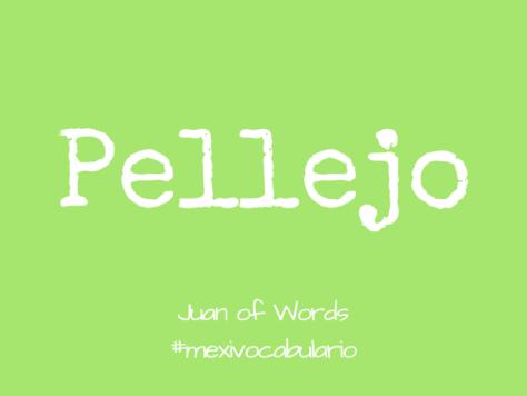 Mexi-Vocabulario: Pellejo