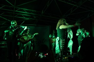 Tamale Festival Houston