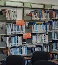mis vacaciones en la biblioteca