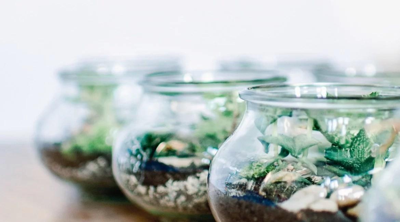 Mini Terrarium als Gastgeschenk in der Farbe Greenery