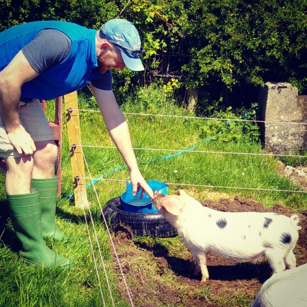 Jonny Hanson with Daisy, one of Jubilee Farm's pigs.