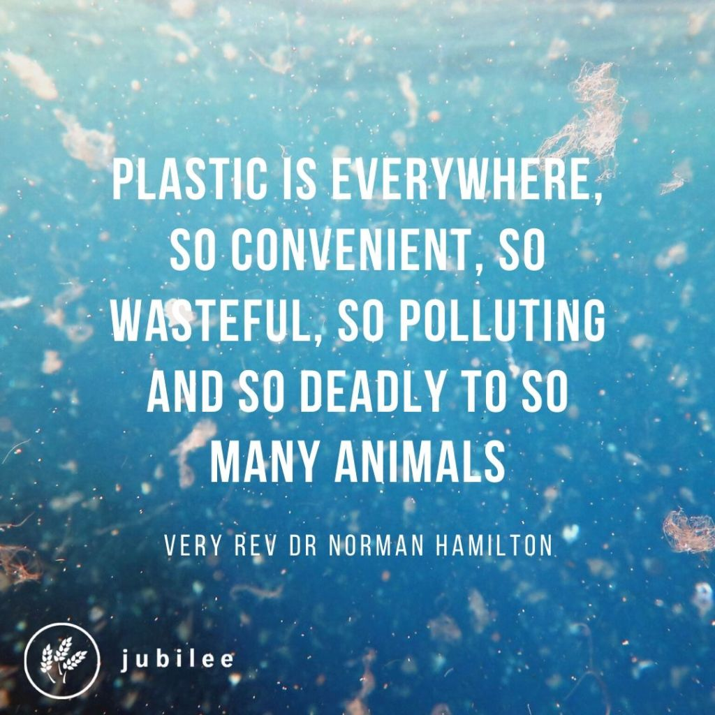 "Accountable for creation quote - ""Plastic is everywhere. So convenient. So polluting and so deadly to so many animals."""