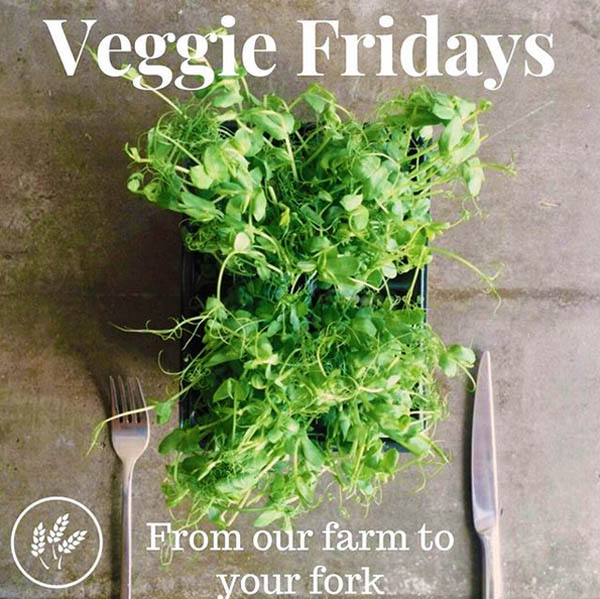 Jubilee Farm's fresh veggies can be picked up Fridays between May and December.