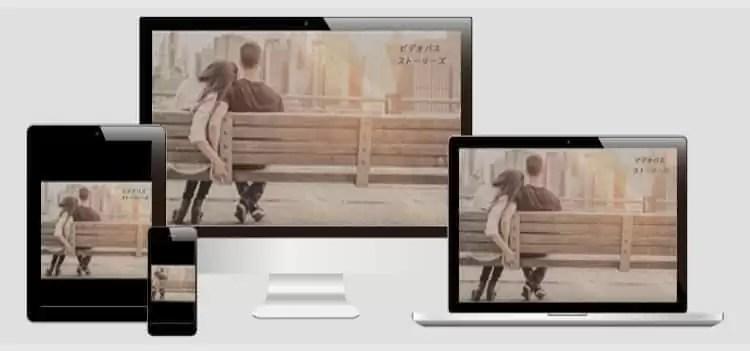 ビデオパス パソコン