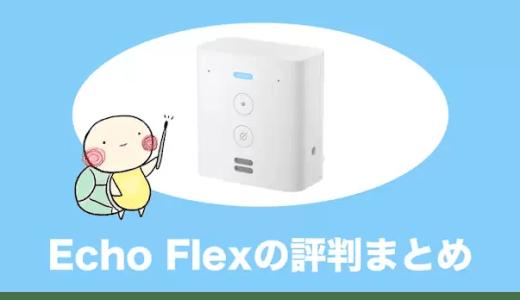 Echo Flexの使い方や評判、メリット・デメリットをやさしく解説