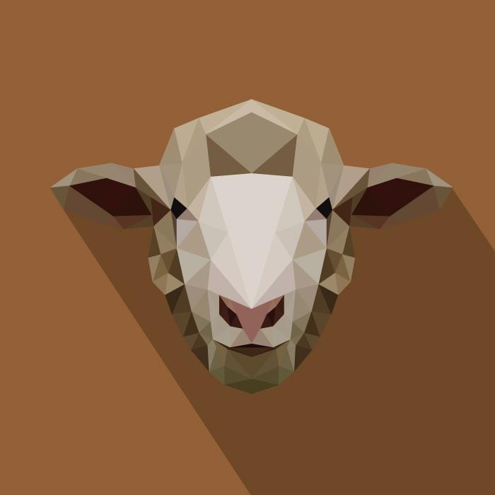 Low Poly Animals | Jude Coram Design