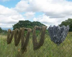 hand-dyed yarn drying on the fence, South Africa   Hand Spun Hope, book