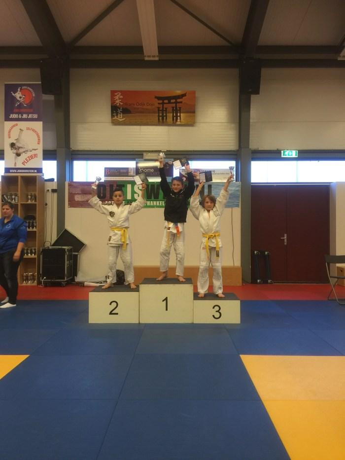 Sil Brons 29e Frans Odijk Toernooi 2015