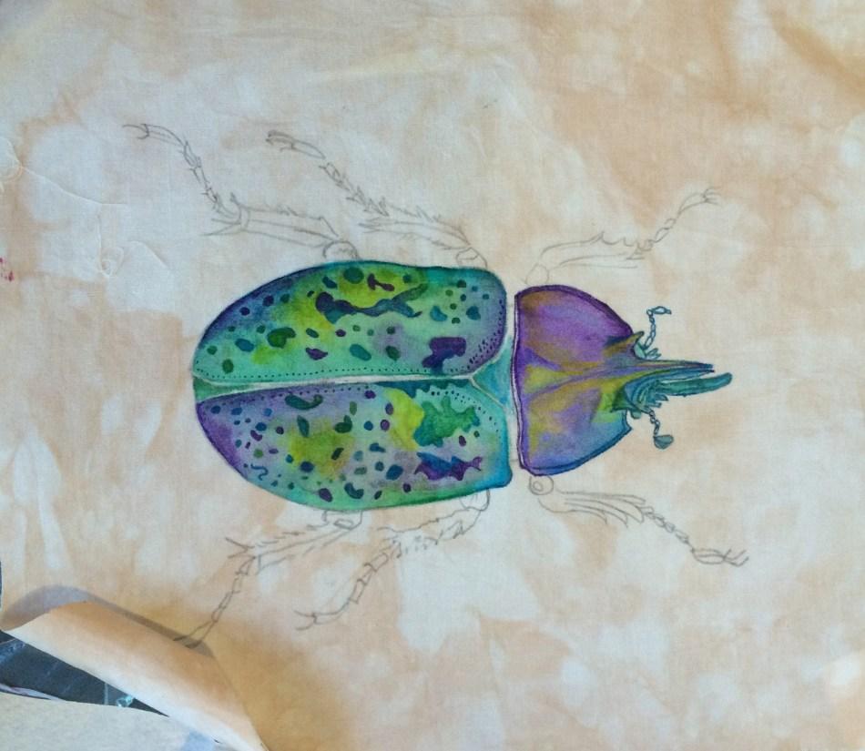 tsuk beetle