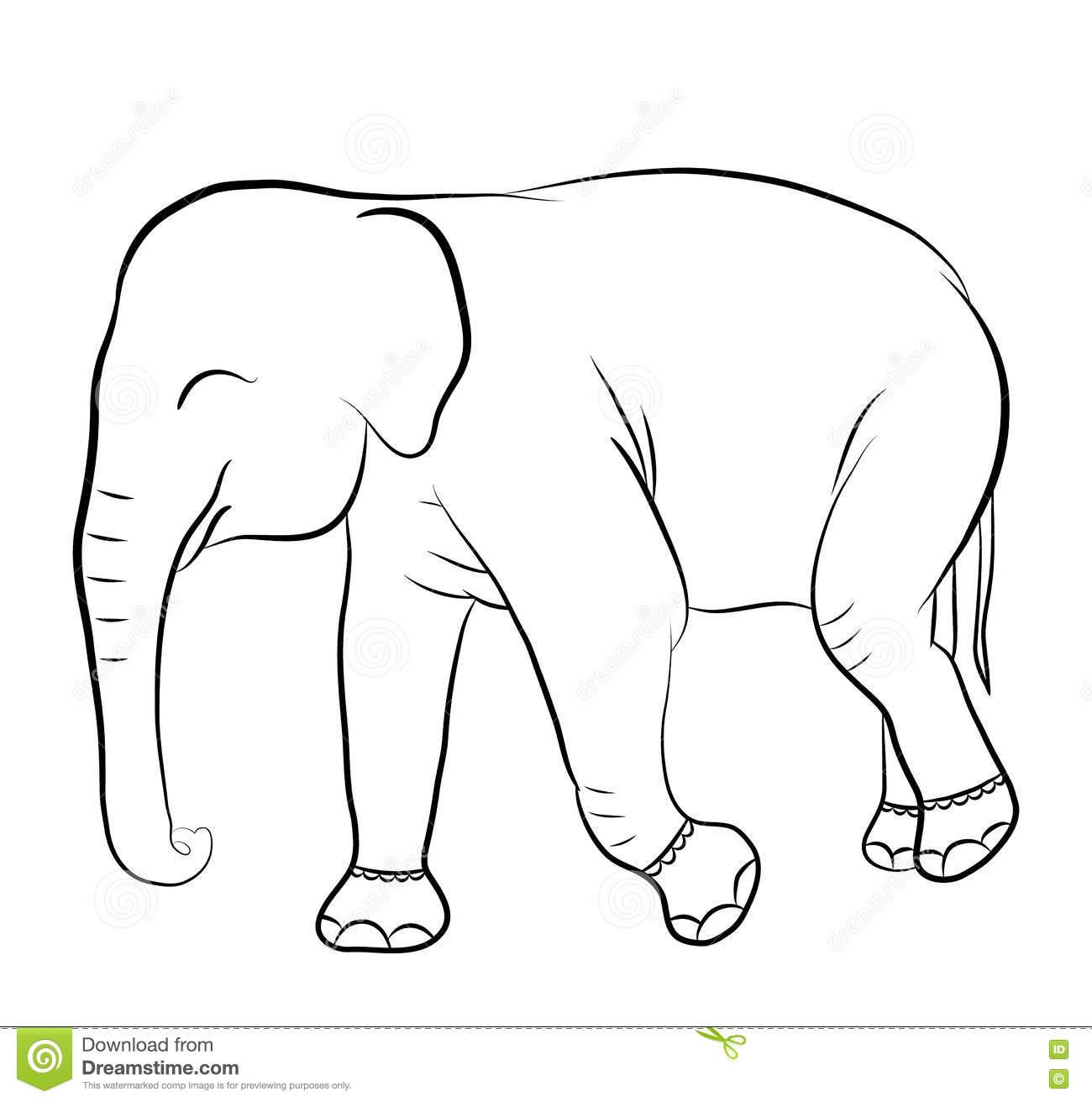 Tiernos Imagenes De Elefantes